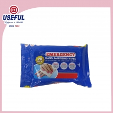 China Disinfection Wet Wipe Multi Pieces Pack (20pcs) factory